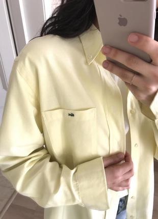 Офигенная рубашка оверсайз лимонного цвета от lacoste оригинал!2 фото