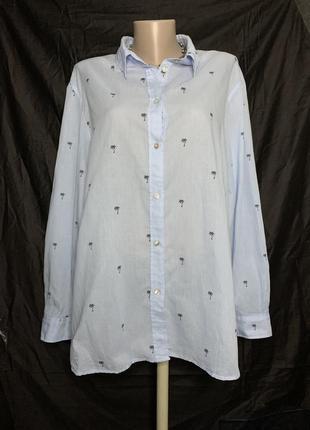 Батал! хлопковая рубашка  h&m+