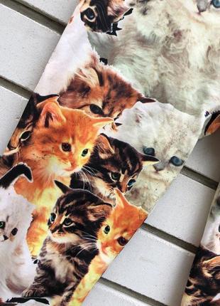 Новые лосины леггинсы с котиками4 фото