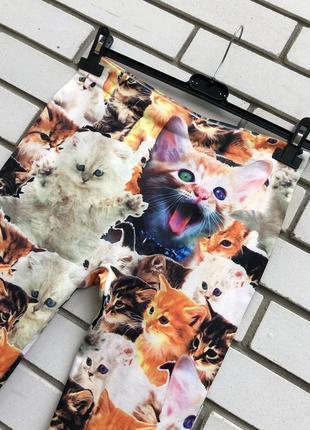 Новые лосины леггинсы с котиками5 фото