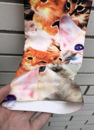Новые лосины леггинсы с котиками6 фото