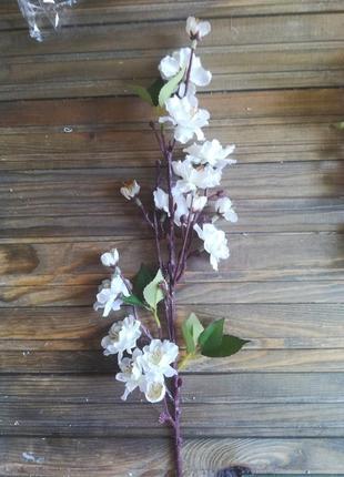 Яблуневий цвіт, сакура, гілочка декоративна, цвіт вишні