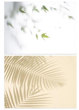 Фотофон однотонный (двухсторонний) фон для съемки фотозона фото летний пальмы весенний