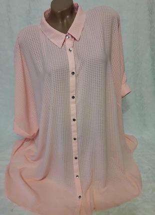 Нежно-розовая блуза большого размера