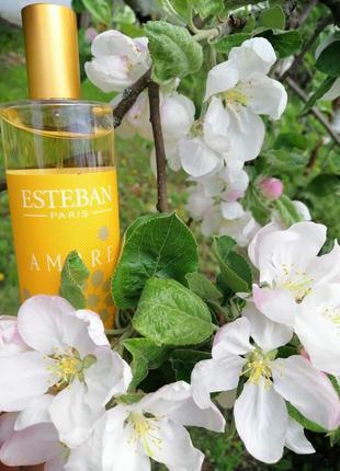 Парфумований аромат для дому esteban ambre (100мл) францiя
