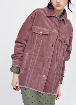 Трендовая куртка рубашка вельветовая zara