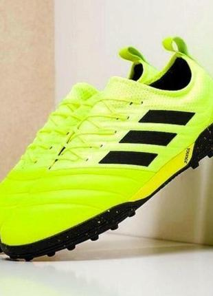 Сороконожки adidas copa 19.1