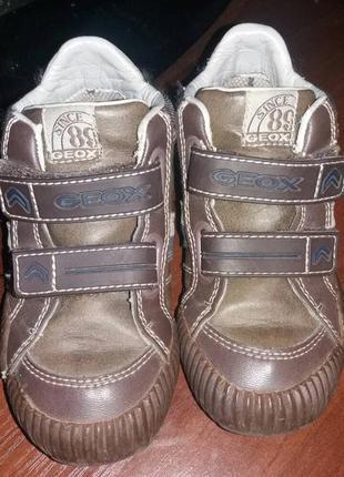 Ботинки geox 25 размер