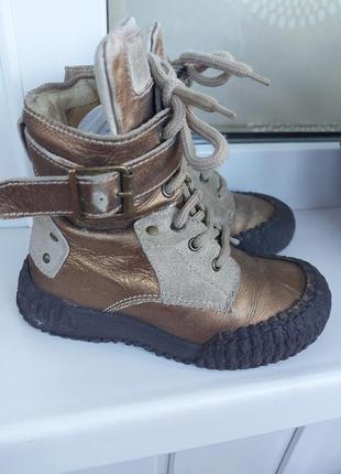 Ботинки унисекс primigi кожаные 16см по стельке италия