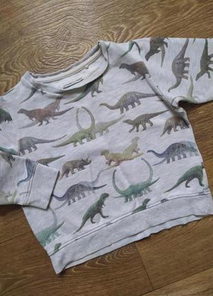 Свитшот/джемпер/реглан/кофта динозавры дино
