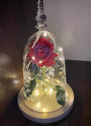 Роза під куполом з підсвіткою