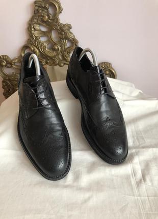 Кожаные туфли дерби luciano illara рр 412 фото