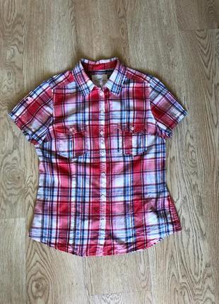 Рубашка в клетку, блузка в клетку 100%хлопок