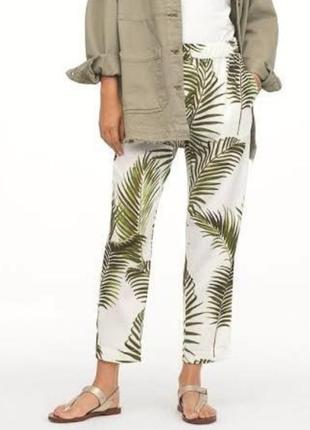 Штаны h&m зелёные листья пальм