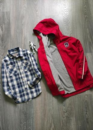 Ветровка куртка рубашка