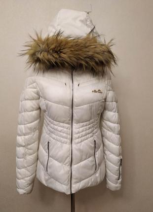 Лыжная куртка, италия, м