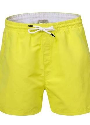 Мужские пляжные шорты glo-story