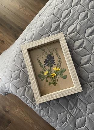🌿 картина из сухоцветов , интерьер , декор , украшение