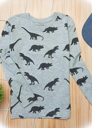 Реглан дино, динозавры, реглан серый, свитшот, лонгслив