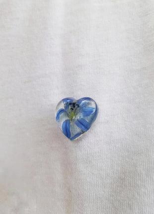 Брошь значек с сухоцветов сцилла подснежник брошка из эпоксидной ювелирной смолы