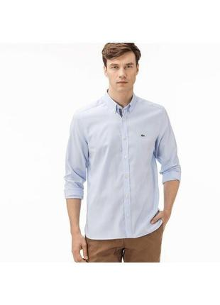 Мужская хлопковая рубашка lacoste xl