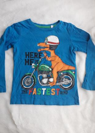 Реглан кофта динозавр