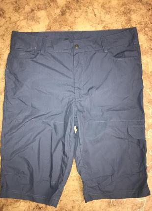 Удлинённые шорты, бриджи, капри, германия ( размер 58,60)