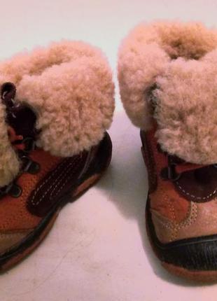 Детские зимние сапожки bartek, овчина