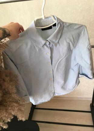 Классическая рубашка, с коротким рукавом