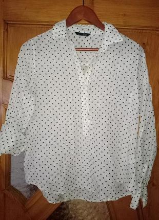 Шелк ! шелковая блуза рубашка ellen amber