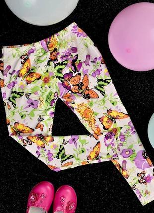 Якісні яскраві лосинки на літо з метеликами тканина масло