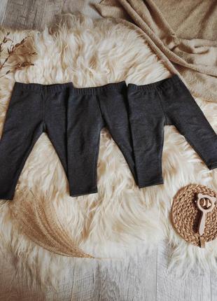 Базовые лосины лосинки штаны штанишки теплые с начёсом