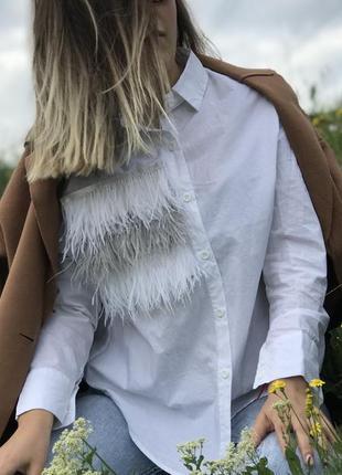 Рубашка с страусиными перьями (снимаются для стирки)