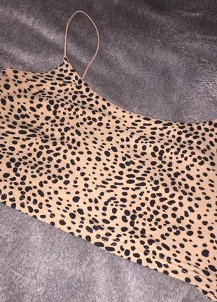 Топ леопардовый