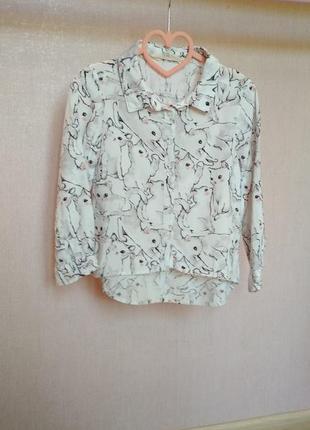 Блуза, рубашка с котиками