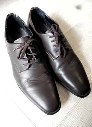 Туфли мужские calvin klein оригинал кожа темно коричневые