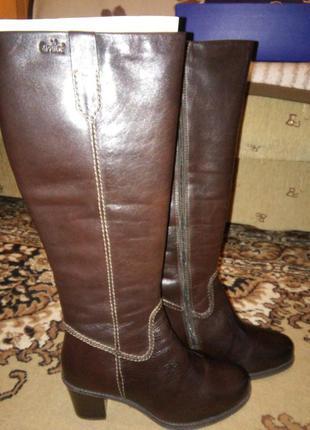 Новые зимние сапоги на цыгейке, полностью кожаные, удобный каблук