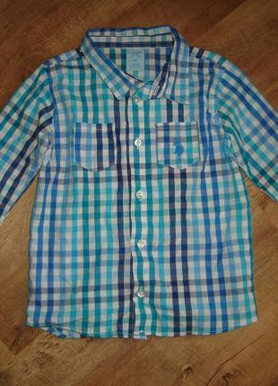 Рубашка u.s.polo assn 4t, 100% коттон, сделана в бангладеш