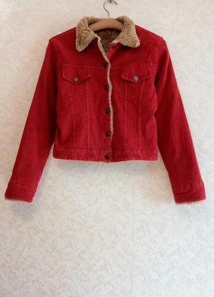 Теплая, вельветовая курточка с мехом esisto