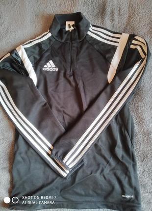 Спорт  adidas