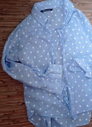 Рубашка горошек хлопок1 фото