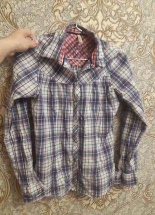 Рубашка блузка в клетку с пуговицами и воротником длинный рукав