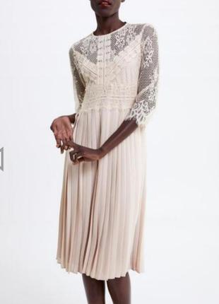 Zara.  нежное кружевное платье миди