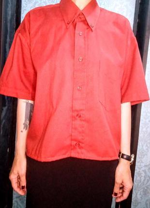 Темно - оранжевая рубашка с коротким рукавом оверсайз armando