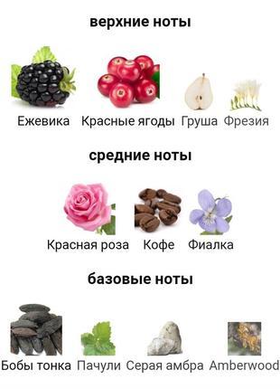 Розкішний аромат dolce&gabbana the only one 2  розпив3 фото