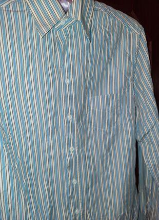 Хлопковая женская голубая рубашка в полоску massimo dutti