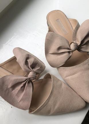 Туфлі мюлі