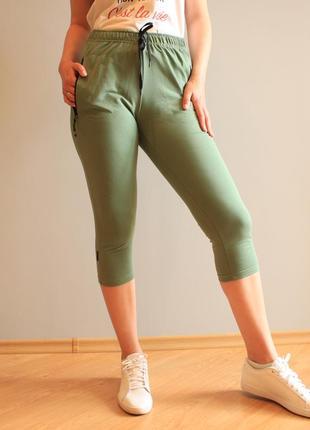 Женские повседневные трикотажные бриджи спортивного стиля размеры 48-58 (100_олив)