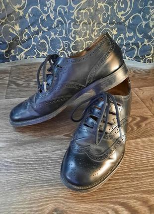 Кожаные броги оксфорды классические туфли с перфорацией envoy