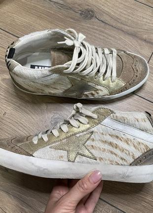 Golden goose midstar zebra голден гуз кроссовки кожа